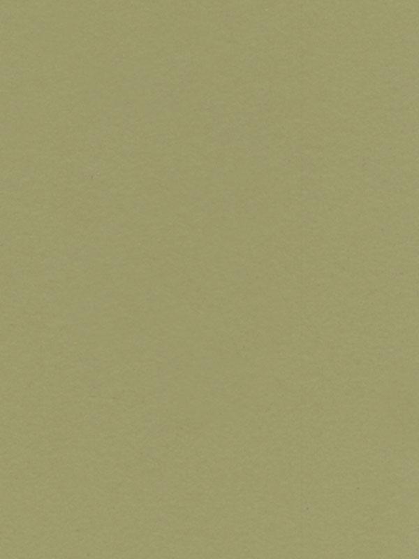 Зеленые саванны